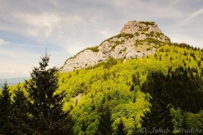 Pohled na Malý Rozsutec z rozcestí Pod Tanečnicou