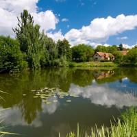 Bukovanský rybník