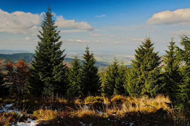 Pohled z vrcholu Travného