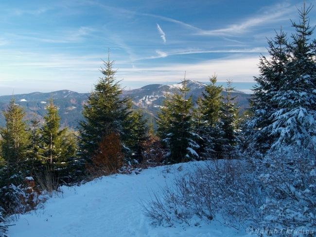 Pohled na masiv Lysé hory