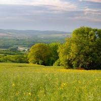 Morava malovaná...
