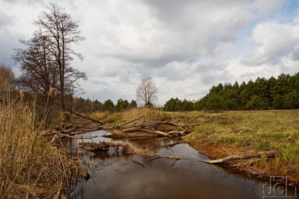 "Výprava ""Bialowiežský prales 2019"", III. část"