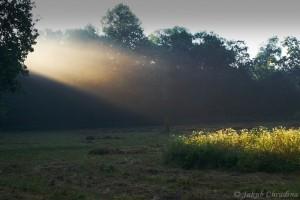 Ráno u Lučiny