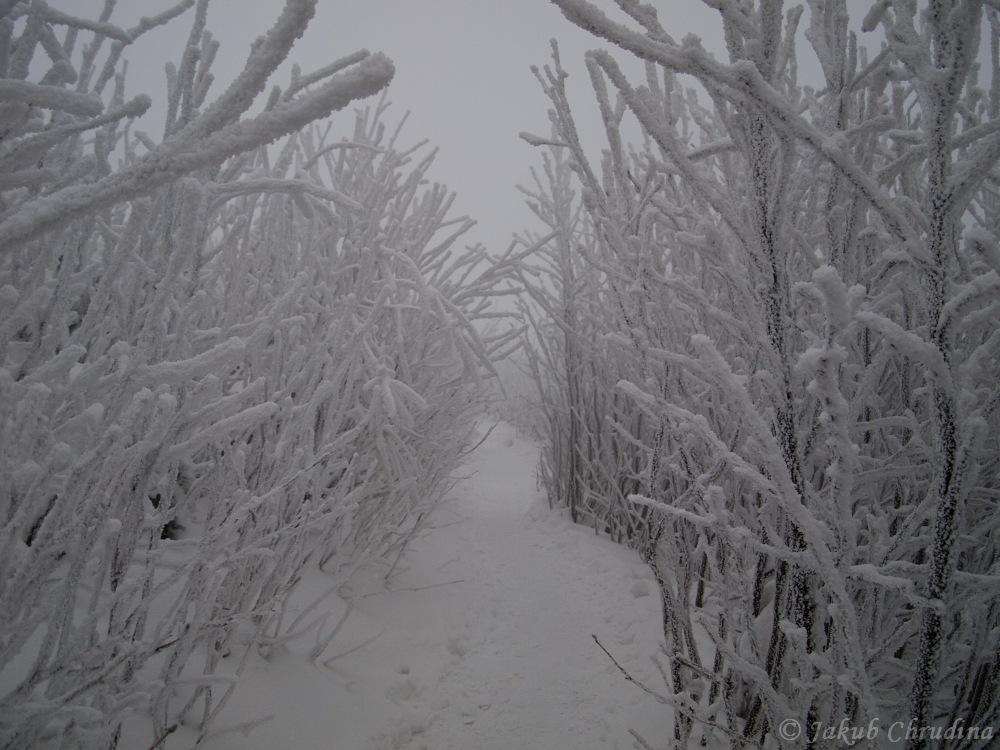 Fofrem na Lysou horu…a hned zase zpátky