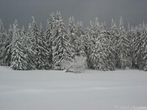 Zimní Tetřev a Skalka